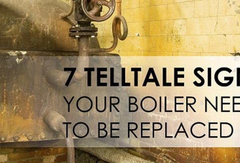 Boiler Maintenance | Weil-McLain